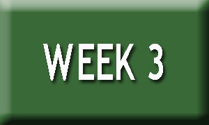 Week 3