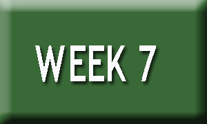 Week 7